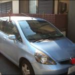 今年も車がトナカイに^^